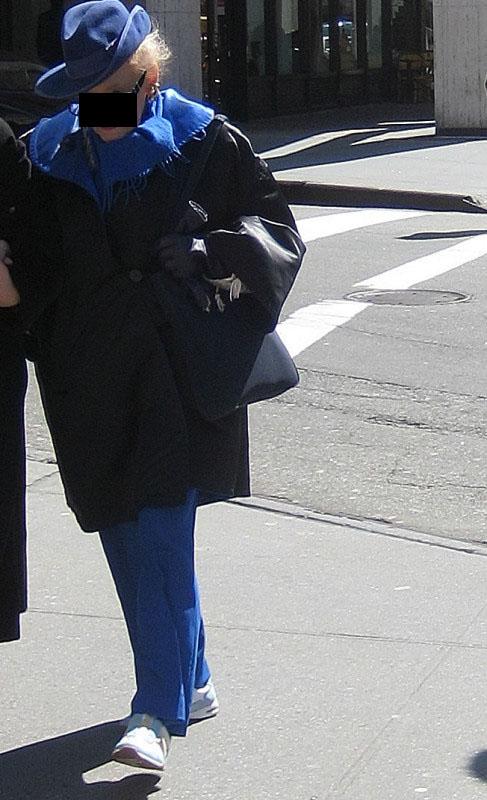 blueiris20096.JPG
